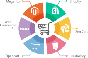 Ecommerce Website Development in Udaipur